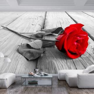 Φωτοταπετσαρία - Abandoned Rose