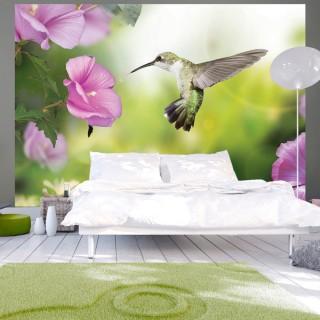 Φωτοταπετσαρία - Humming-bird