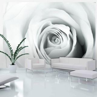 Φωτοταπετσαρία - Rose charade