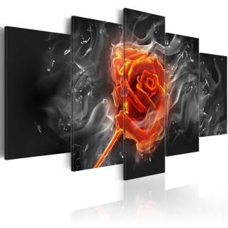 Πίνακας - Fiery Rose