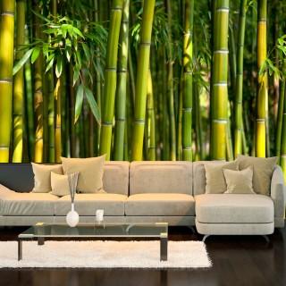 Φωτοταπετσαρία - Oriental Garden