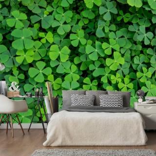 Φωτοταπετσαρία - Green Clover
