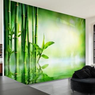 Αυτοκόλλητη φωτοταπετσαρία - Bamboo Grove