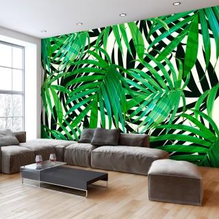 Φωτοταπετσαρία - Tropical Leaves