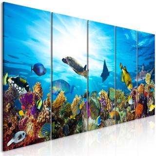 Πίνακας - Coral Reef (5 Parts) Narrow