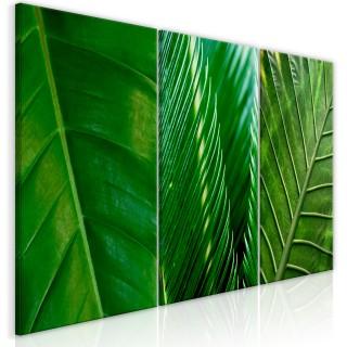 Πίνακας - Leaves (Collection)
