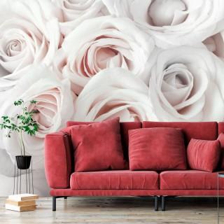 Φωτοταπετσαρία - Satin Rose (Pink)