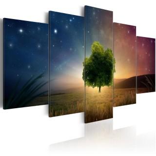 Πίνακας - Starry Nights