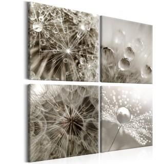 Πίνακας - Grey Dandelion