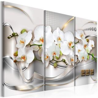 Πίνακας - Blooming Orchids I