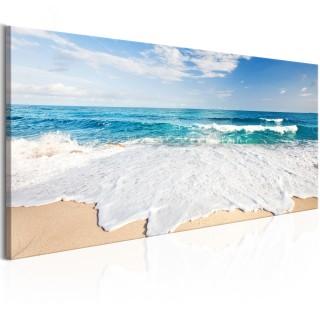 Πίνακας - Beach on Captiva Island