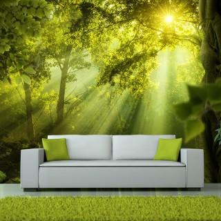 Αυτοκόλλητη φωτοταπετσαρία -  In a Secret Forest