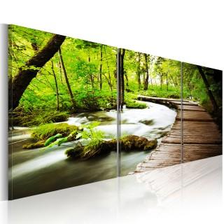 Πίνακας - Forest Brook