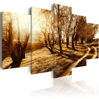 Πίνακας - Amber orchard