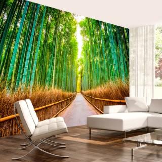 Αυτοκόλλητη φωτοταπετσαρία - Bamboo Forest