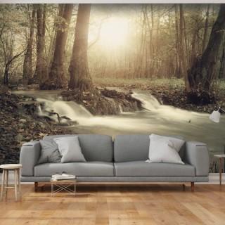 Φωτοταπετσαρία - Forest Cascade