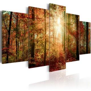 Πίνακας - Autumn Wilderness