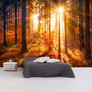 Αυτοκόλλητη φωτοταπετσαρία - Autumnal Time