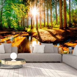 Φωτοταπετσαρία - Marvelous Forest
