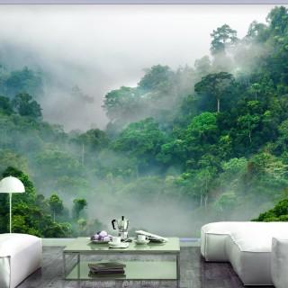 Φωτοταπετσαρία - Morning Fog