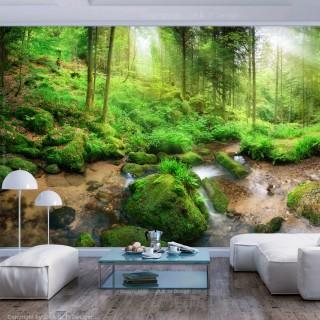 Φωτοταπετσαρία - Humid Forest