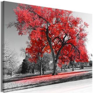 Πίνακας - Autumn in the Park (1 Part) Wide Red