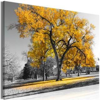 Πίνακας - Autumn in the Park (1 Part) Wide Gold