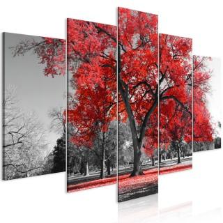 Πίνακας - Autumn in the Park (5 Parts) Wide Red