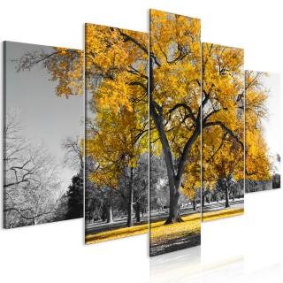 Πίνακας - Autumn in the Park (5 Parts) Wide Gold