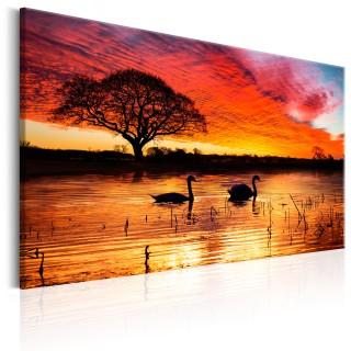 Πίνακας - Swan Lake