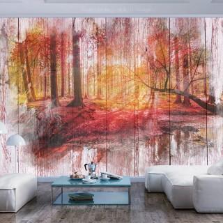 Φωτοταπετσαρία - Autumnal Forest