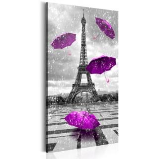 Πίνακας - Paris: Purple Umbrellas