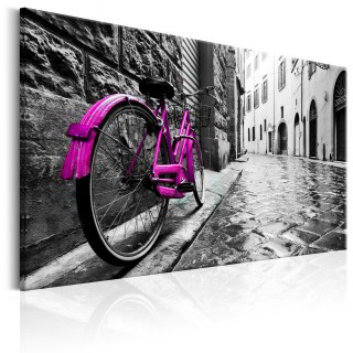 Πίνακας - Vintage Pink Bike