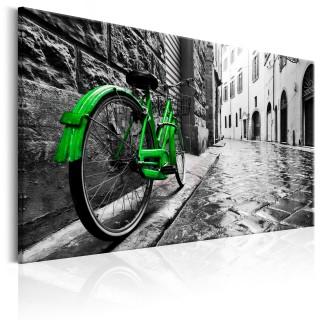 Πίνακας - Vintage Green Bike