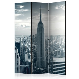 διαχωριστικό με 3 τμήματα - Amazing view to New York Manhattan at sunrise [Room Dividers]