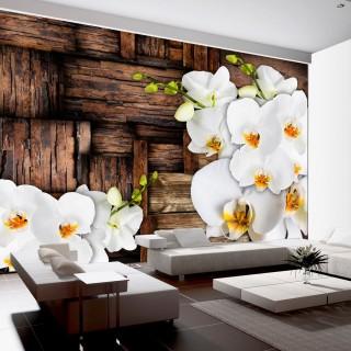 Φωτοταπετσαρία - Blooming orchids