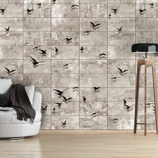 Φωτοταπετσαρία - Bird Migrations