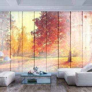 Φωτοταπετσαρία - Autumn Sun