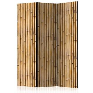 διαχωριστικό με 3 τμήματα - Amazonian Wall [Room Dividers]