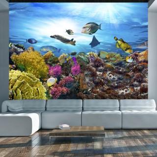 Φωτοταπετσαρία - Coral reef