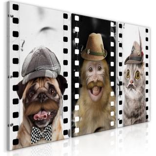 Πίνακας - Funny Pets (Collection)