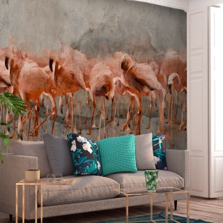 Φωτοταπετσαρία - Flamingo Lake