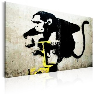 Πίνακας - Monkey Detonator by Banksy