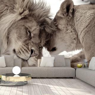 Αυτοκόλλητη φωτοταπετσαρία - Lion Tenderness (Sepia)