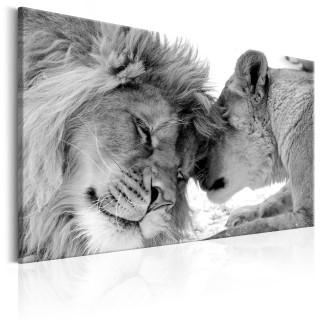 Πίνακας - Lion's Love