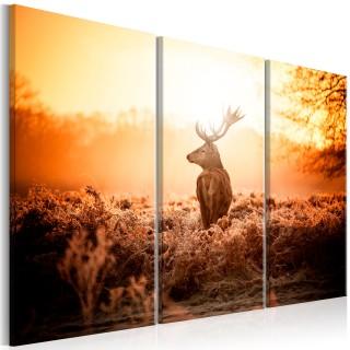 Πίνακας - Deer in the Sun I