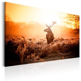 Πίνακας - Deer in the Sun