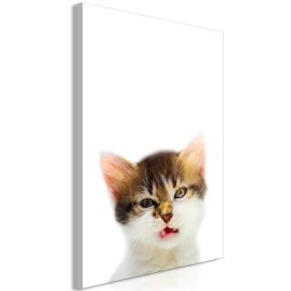 Πίνακας - Vexed Cat (1 Part) Vertical