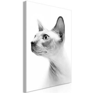 Πίνακας - Hairless Cat (1 Part) Vertical