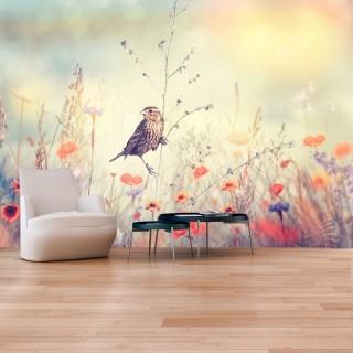 Αυτοκόλλητη φωτοταπετσαρία - Field Bird